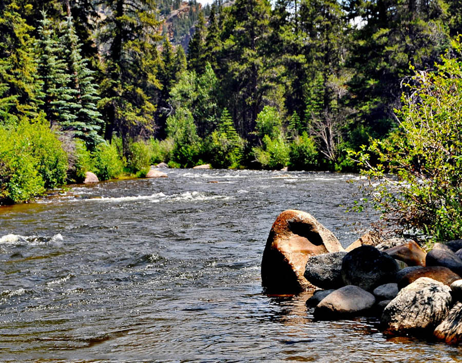 The Taylor River near Almont, Colorado.