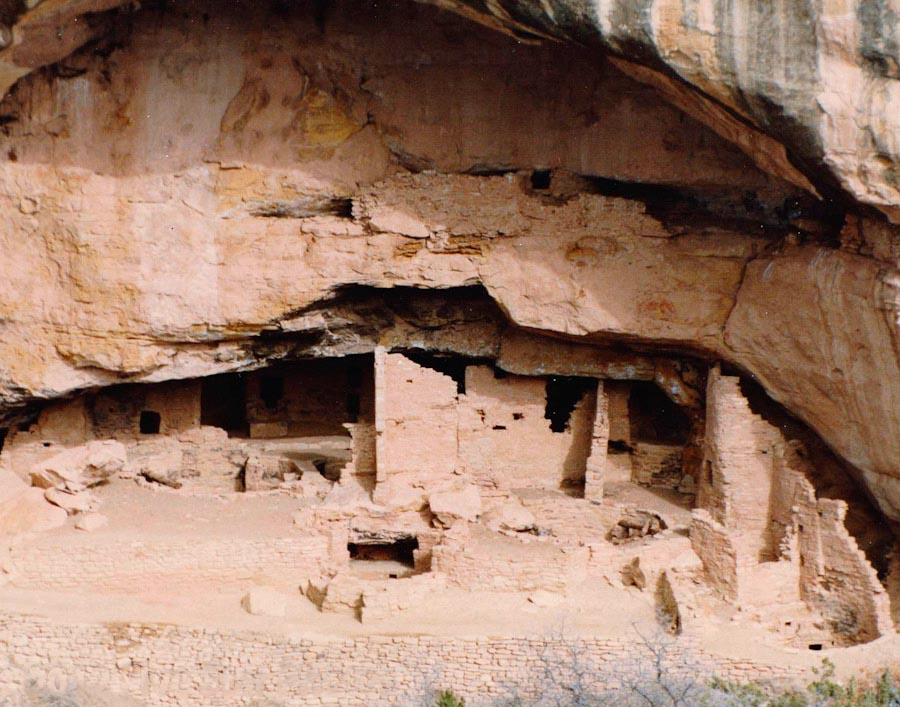 The Cliff Palace cliff dwelling at Mesa Verde National Park.